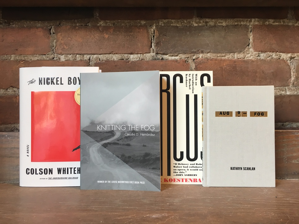 D+Q Picks of the Week: major novel alert, remixed diary, lots of fog, and more!